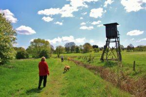 dog walking private land
